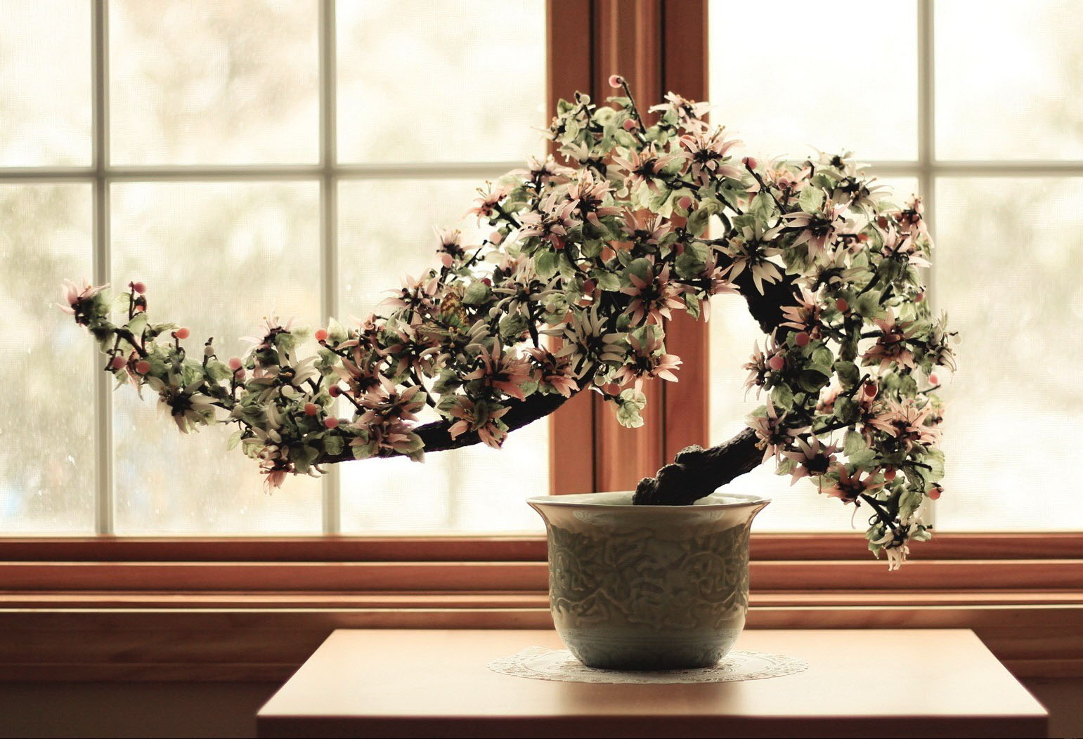 primavera come potare il bonsai